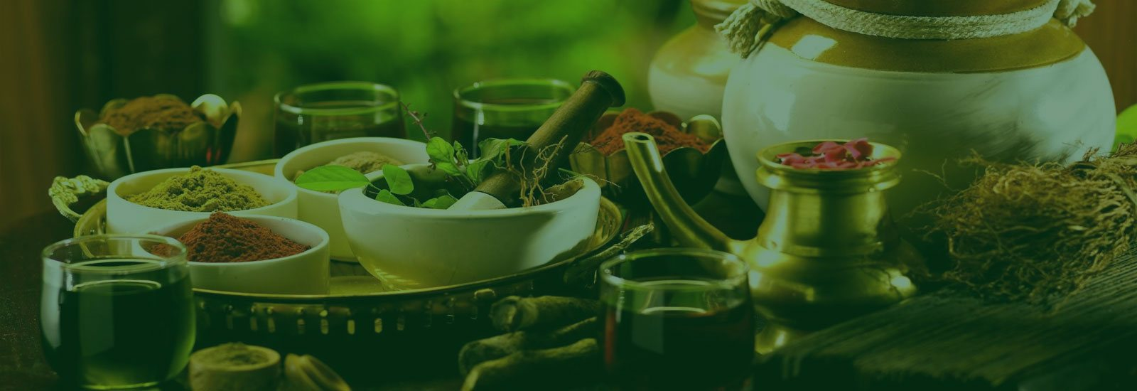 Ayurvedic Treatment in Kerala